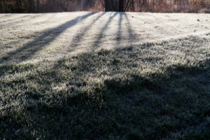 Frost on a golf course